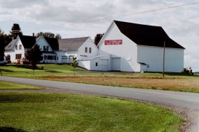 Potato Farm in Mapleton (2001)