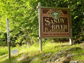 "sign: ""Sandy River Plantation, Home of Saddleback Mountain"" and Town Line marker and a political sign (2004)"