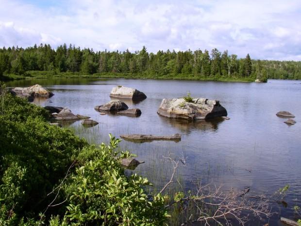 Parlin Pond (2004)