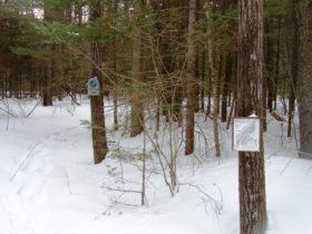 Mast Landing Audubon Sanctuary Trail (2005)
