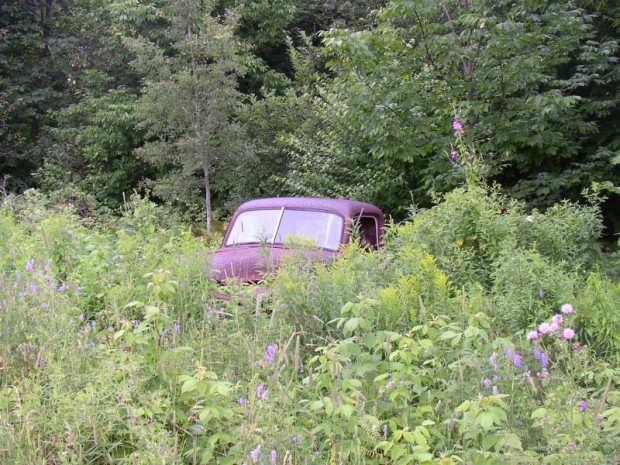 Abandoned Vehicle in the Brush and Trees (2005)