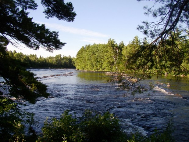 East Branch of the Penobscot River in Grindstone Township (2005)