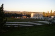 Barn with Horses at Sundown Near Belmont (2006)