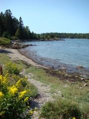 A beach on Calderwood Island near the eastern end of the Fox Islands Thoroughfare
