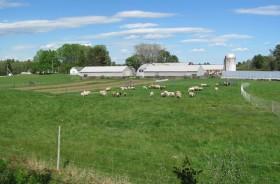 Crystal Spring Farm, 277 Pleasant Hill Road (2010)
