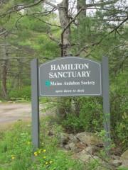 Sign: Hamilton Sanctuary