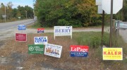 Political Signs 2010