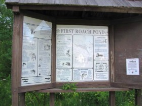 Informational Kiosk at First Roach Pond
