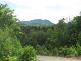 Elephant Mountain from the Access Road (2011)