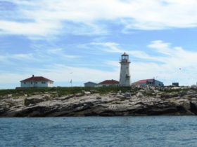 Canadian Machias Seal Island Light near Cutler that Hosts many Seabirds, including Puffins (2011)