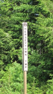 "Sign: ""Town Line, Herseytown TWP"" on Route 11 (2012)"