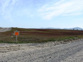 Sign Warning of Chemical Spray on Blueberry Barrens in Deblois near Route 193