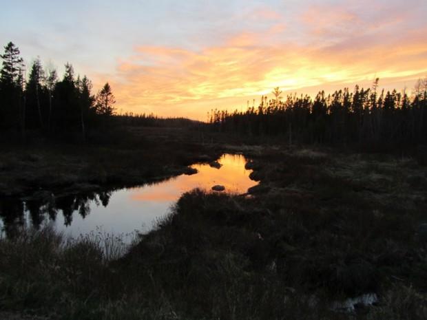 Sunset over Small Stream in Vanceboro (2013)