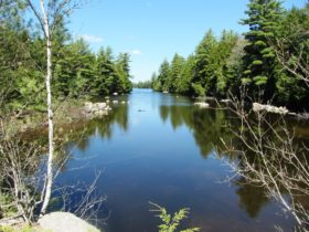Stream linking Pocumus and Wabassus Lake on the Fourth Lake Road (2013)