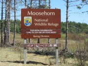 """Moosehorn National Wildlife Refuge"" (2013)"