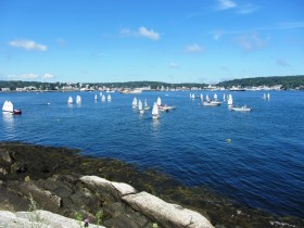 Optimist Sailing Dinghies the Harbor (2013)