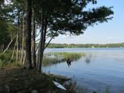 Shore of Lake Anasagunticook in Hartford (2013)