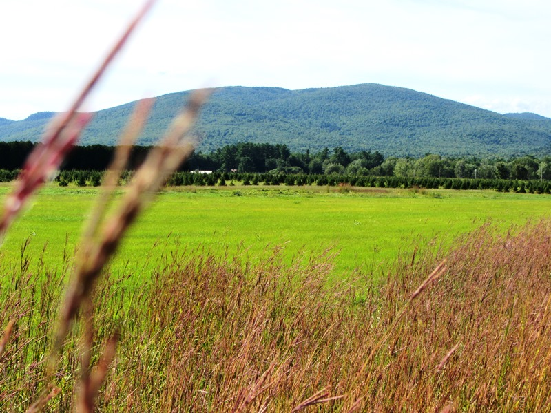 Fryeburg | Maine: An Encyclopedia