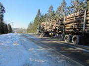 Route 6, a freeway for logging trucks (2014)