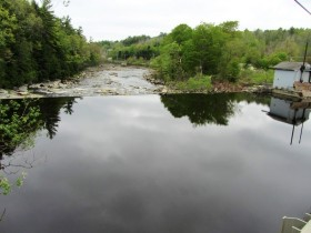 The Marsh River Downstream of the Bridge in the Village (2014)