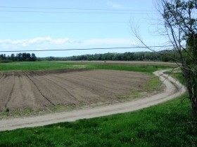 Cropland near the Piscataquis River in Sebec (2014)