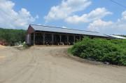 Dairy Farm at Huff Corner (2014)