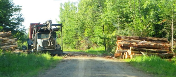 Logging Truck on 07-00-0 Road