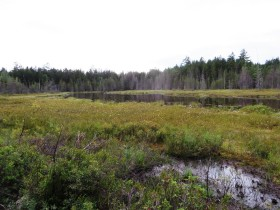 "Unnamed ""Moose View"" Pond (2014)"