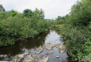 Swift Brook Upstream August (2014)
