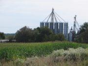 Northeast Agricultural Sales (2014)