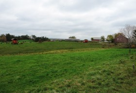 Dairy Farm on the West River Road (2012)