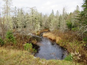 Henderson Brook crossing upstream of U.S. Route 2 in T1 R4 WELS (2014)