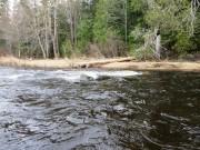 Mooseleuk Stream from a Canoe in T9 R8 WELS (2015)