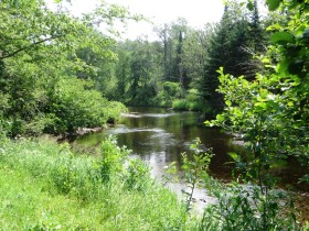 East Branch of the Mattawamkeag River in Merrill (2015)