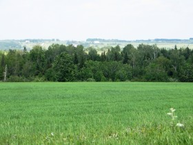 Panoramic View from the north side of Moose Island Road (2015)