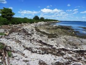 Bangs Island North East Shore (2015)
