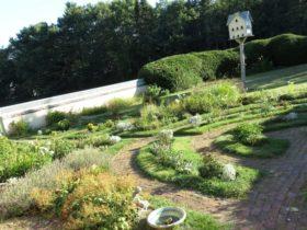 Walled Garden (2015)