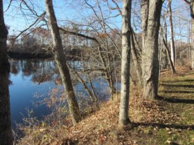 Kennebec River near the Homestead (2015)