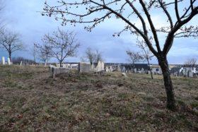 Eastern Cemetery (2015)
