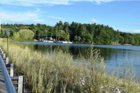Middle Range Pond (2016)