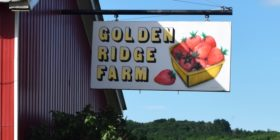 sign: Golden Ridge Farm (2017)