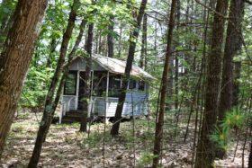 Watkins Cabin (2017)