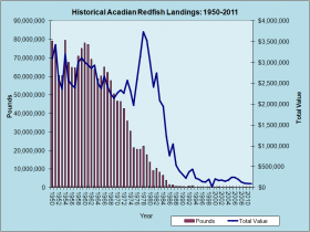 Acadian Redfish Landings 1950-2011