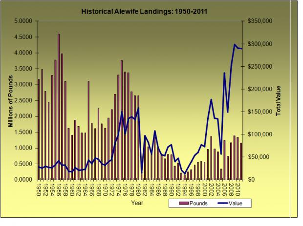 Alewife Landings 1950-2011