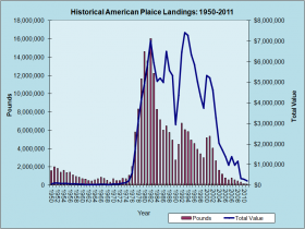 American Plaice Landings 1950-2011