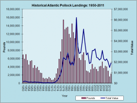 Atlantic Pollock Landings 1950-2011