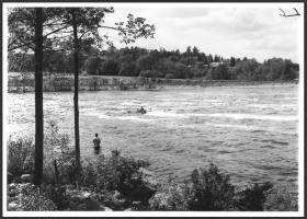 Bangor-Brewer Salmon Pool 1976