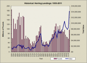 Herring Landings 1950-2011