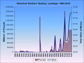 Northern Quahog Landings 1964-2016