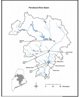 Penobacot River Watershed Map NOAA
